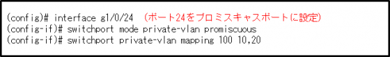 図10コマンド4 プロミスキャスポート設定